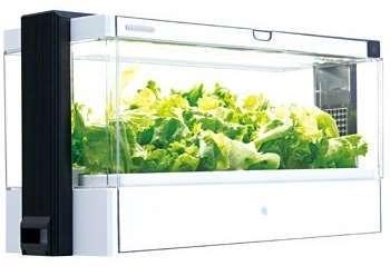 greenfarm.jpg